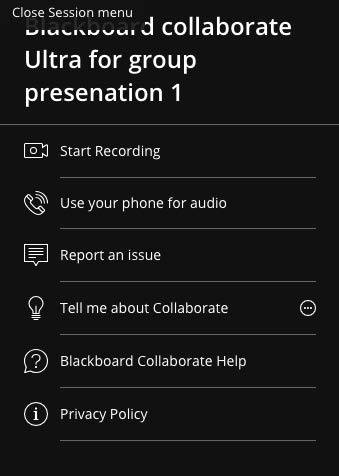 Start Recording button to start recording the session when ready